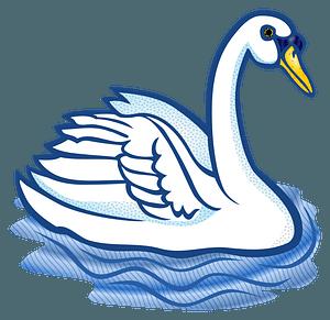 Mute swan swimming clipart