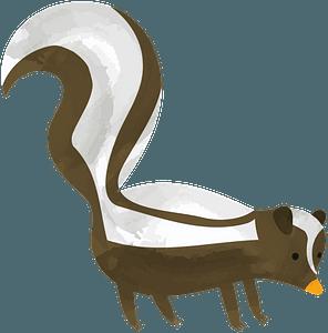 Skunk clipart