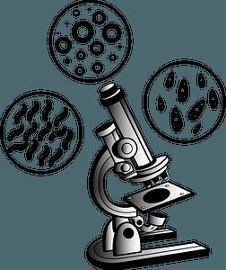 Microscope virus clipart