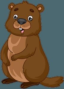 Groundhog clipart