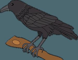 Raven clipart