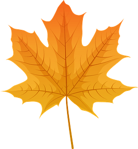 Norway maple red leaf clipart