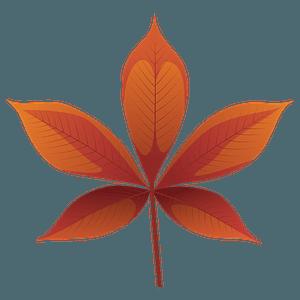 Ohio buckeye red leaf clipart