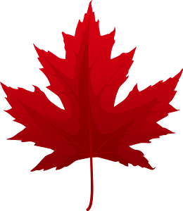 Silver maple red leaf clipart