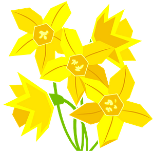 Daffodils clipart