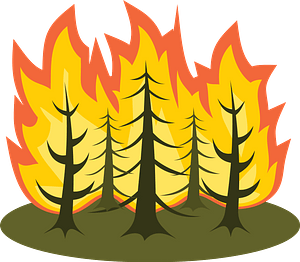 Forest on fire clipart