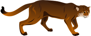 Bay Cat clipart