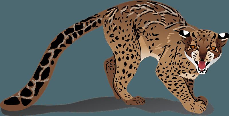 Marbled Cat 클립 아트