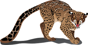 Marbled Cat clipart