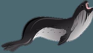 Ross Seal clipart