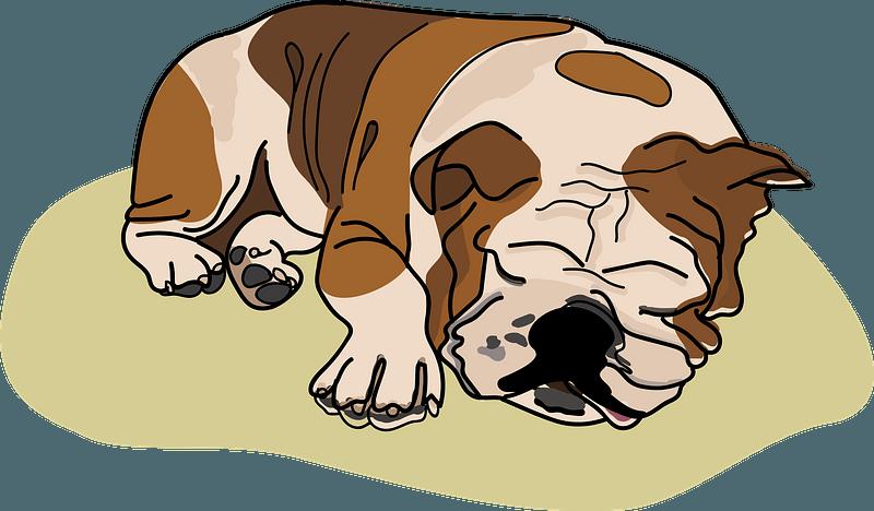 Bulldog para dormir clipart