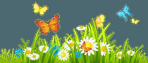 Spring landscape clipart
