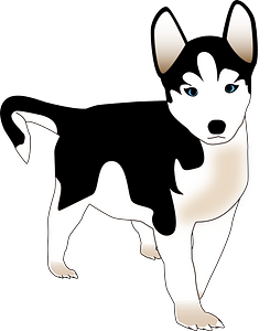 Husky puppy clipart