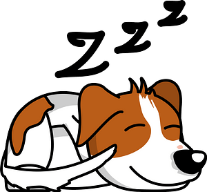 Sleeping Jack Russell Terrier clipart