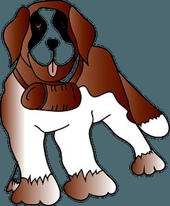 Saint-bernard clipart
