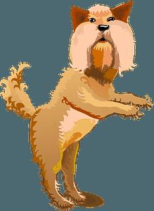 Yorkshire Terrier clipart
