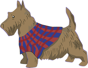Scottish Terrier clipart