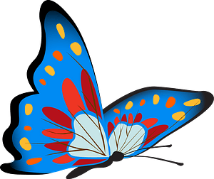 Colourful butterfly clipart