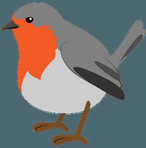 Christmas robin clipart