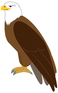 Eagle immagine clipart