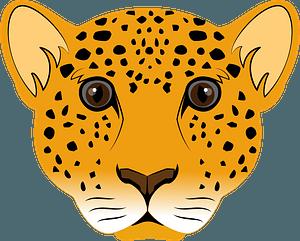 Leopard face 클립 아트