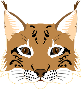 Lynx face 클립 아트