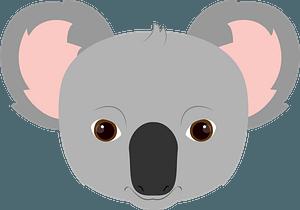 Koala face clipart