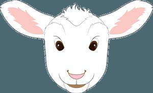 Lamb face clipart