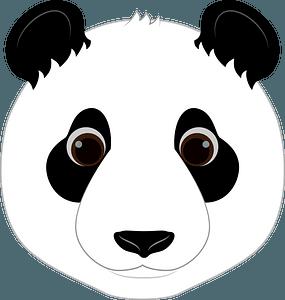 Panda face clipart