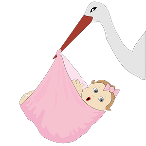 Stork with a baby girl clipart