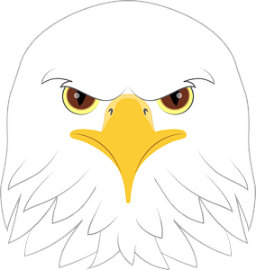 Bald eagle face clipart