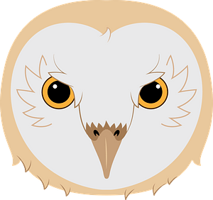 Barn owl face clipart