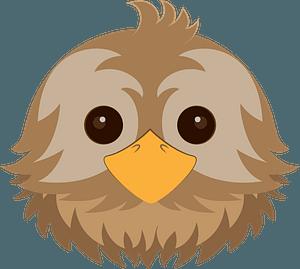 Bird face clipart