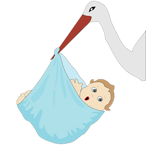 Stork with a baby boy clipart