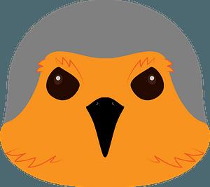 Robin bird face clipart