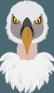 Vulture face clipart