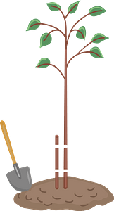 Planted tree clipart