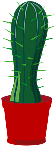 Cactus in a pot clipart