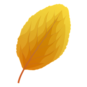 Plum tree autumn leaf clipart