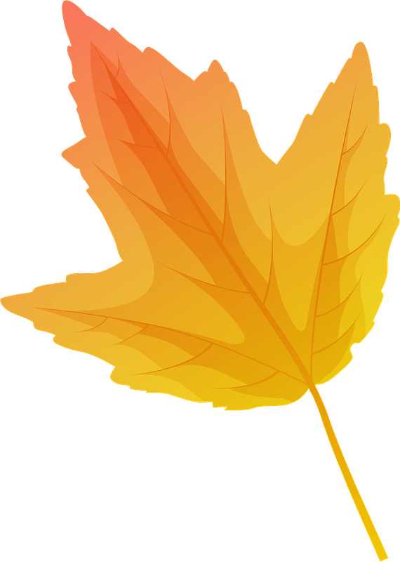 Red maple autumn leaf clipart