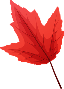 Red maple late autumn leaf clipart