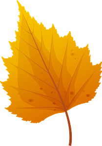 Silver birch late autumn leaf clipart
