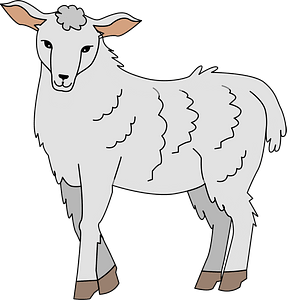 Sheep immagine clipart
