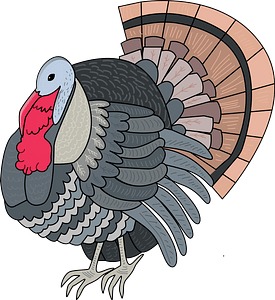 Turkey immagine clipart