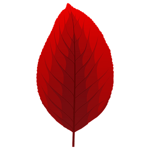 Pear tree red leaf clipart