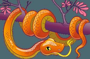 Snakeのクリップアート