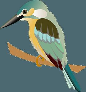 Kingfisher bird clipart