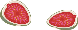 Common Fig clipart