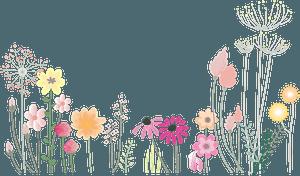 Flower Spring Petals clipart