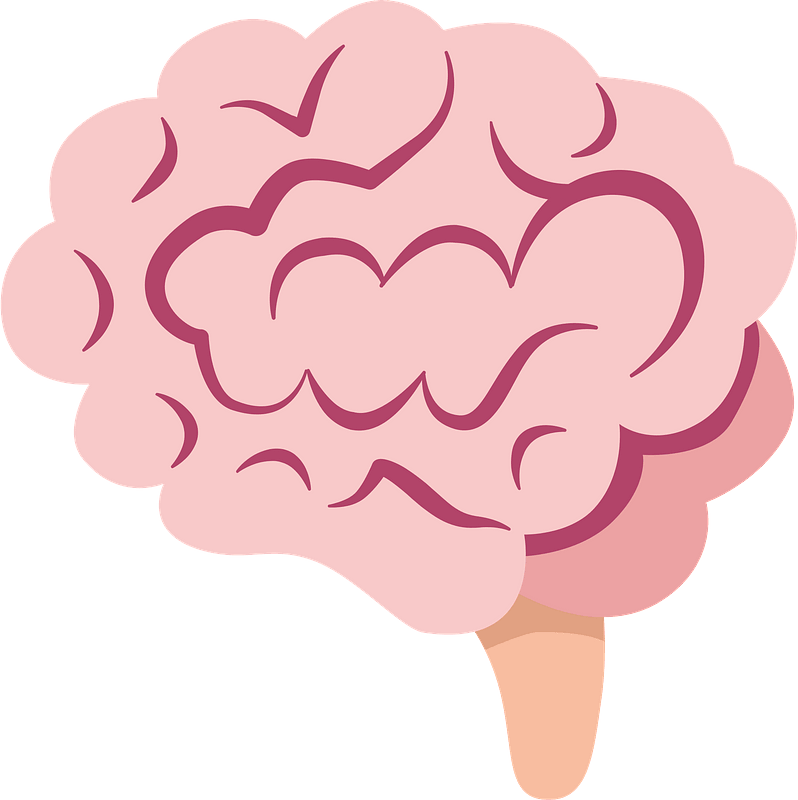Get Brain Clipart